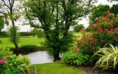 Chouchoutez votre jardin